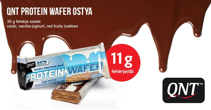 QNT Protein Wafer Ortya