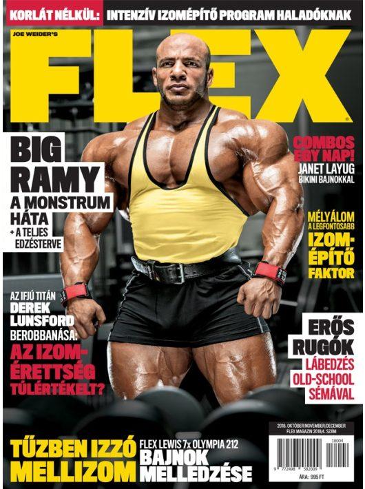 FLEX Magazin 2018/4. lapszám