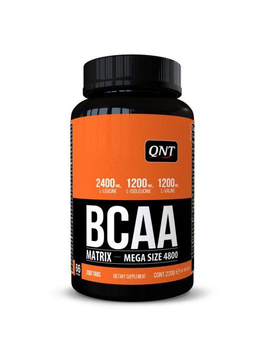 QNT MATRIX BCAA 4800
