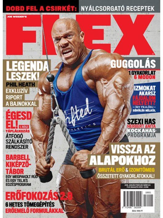FLEX Magazin 2018/1.lapszám