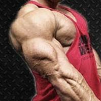 Tricepsz edzés Simon Tamás testépítő világbajnokkal