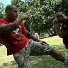 Thai Box edzés Pitbull módra, de Redweiler-el